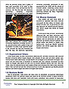 0000092942 Word Template - Page 4