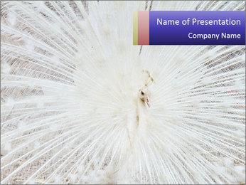 Beautiful spread PowerPoint Template - Slide 1