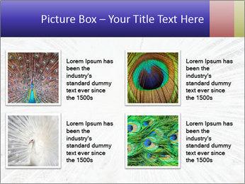 Beautiful spread PowerPoint Template - Slide 14