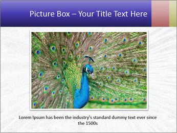 Beautiful spread PowerPoint Template - Slide 15