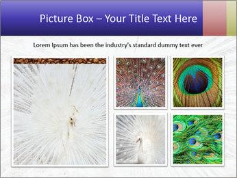 Beautiful spread PowerPoint Template - Slide 19