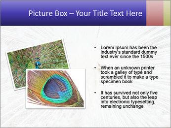 Beautiful spread PowerPoint Template - Slide 20