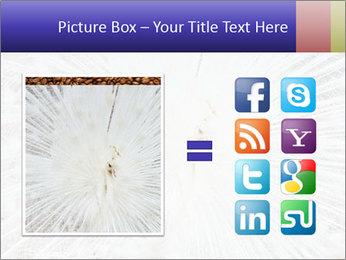 Beautiful spread PowerPoint Template - Slide 21