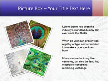 Beautiful spread PowerPoint Template - Slide 23