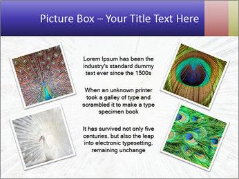 Beautiful spread PowerPoint Template - Slide 24