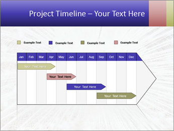 Beautiful spread PowerPoint Template - Slide 25