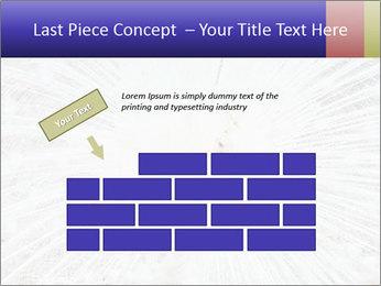Beautiful spread PowerPoint Template - Slide 46