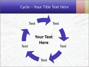 Beautiful spread PowerPoint Template - Slide 62