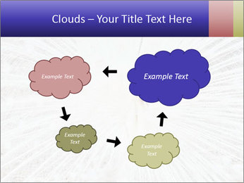 Beautiful spread PowerPoint Template - Slide 72