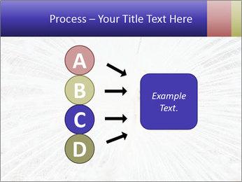 Beautiful spread PowerPoint Template - Slide 94
