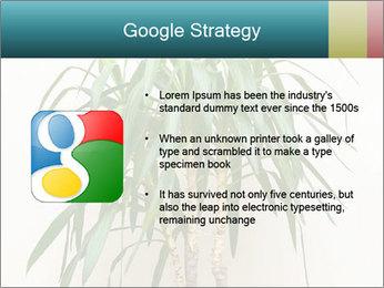 Green houseplant PowerPoint Templates - Slide 10