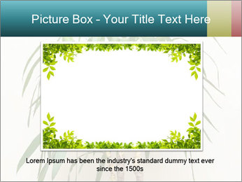 Green houseplant PowerPoint Template - Slide 15