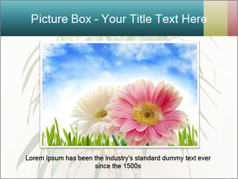 Green houseplant PowerPoint Template - Slide 16