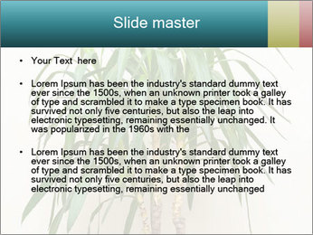 Green houseplant PowerPoint Templates - Slide 2