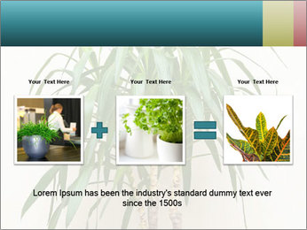 Green houseplant PowerPoint Template - Slide 22