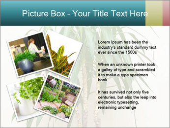 Green houseplant PowerPoint Template - Slide 23
