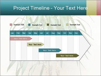 Green houseplant PowerPoint Templates - Slide 25