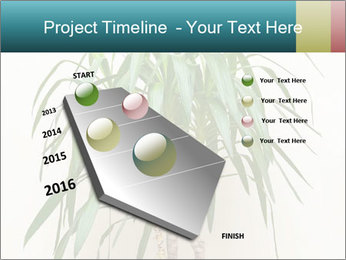 Green houseplant PowerPoint Templates - Slide 26