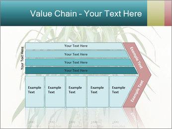 Green houseplant PowerPoint Templates - Slide 27