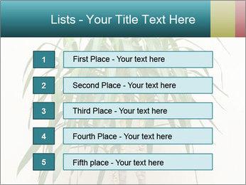 Green houseplant PowerPoint Templates - Slide 3