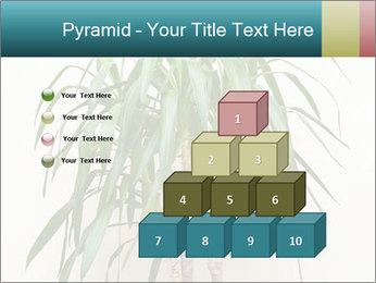 Green houseplant PowerPoint Template - Slide 31