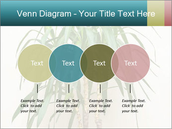 Green houseplant PowerPoint Template - Slide 32