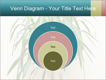 Green houseplant PowerPoint Template - Slide 34