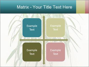 Green houseplant PowerPoint Templates - Slide 37