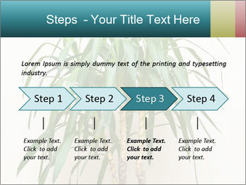 Green houseplant PowerPoint Template - Slide 4