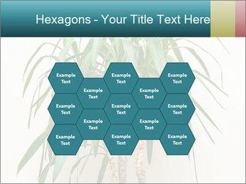 Green houseplant PowerPoint Templates - Slide 44