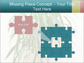 Green houseplant PowerPoint Templates - Slide 45