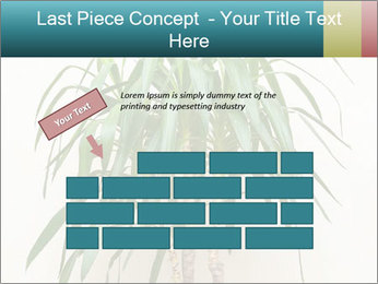 Green houseplant PowerPoint Template - Slide 46