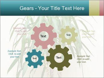 Green houseplant PowerPoint Templates - Slide 47