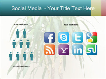 Green houseplant PowerPoint Template - Slide 5