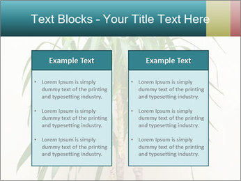 Green houseplant PowerPoint Templates - Slide 57