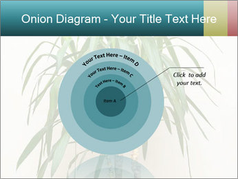 Green houseplant PowerPoint Template - Slide 61
