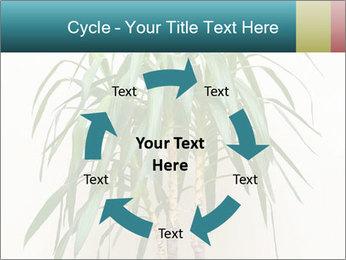 Green houseplant PowerPoint Templates - Slide 62