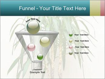 Green houseplant PowerPoint Templates - Slide 63