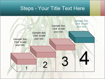 Green houseplant PowerPoint Template - Slide 64