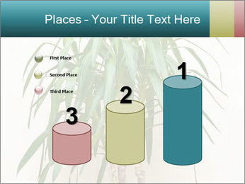 Green houseplant PowerPoint Template - Slide 65
