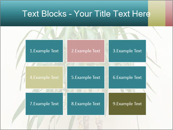 Green houseplant PowerPoint Template - Slide 68