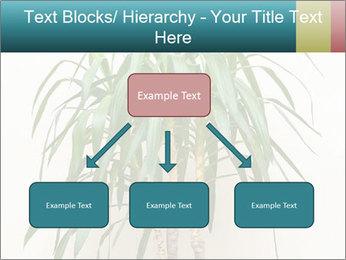 Green houseplant PowerPoint Templates - Slide 69