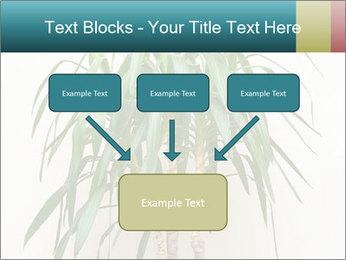 Green houseplant PowerPoint Templates - Slide 70
