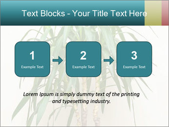 Green houseplant PowerPoint Template - Slide 71