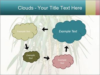 Green houseplant PowerPoint Templates - Slide 72