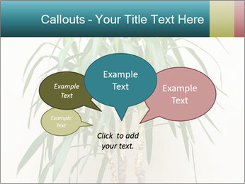 Green houseplant PowerPoint Template - Slide 73