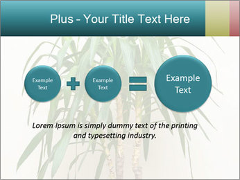 Green houseplant PowerPoint Template - Slide 75