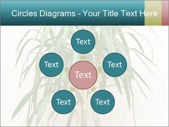 Green houseplant PowerPoint Template - Slide 78