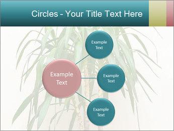 Green houseplant PowerPoint Templates - Slide 79