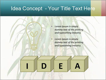 Green houseplant PowerPoint Template - Slide 80